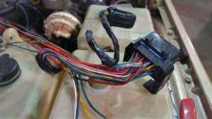 DSC09410 (2)